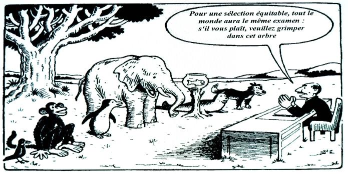 Évaluation, compétences socle/compétences disciplinaires